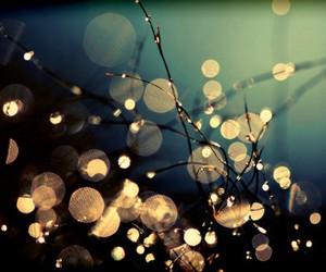 light and beautiful image