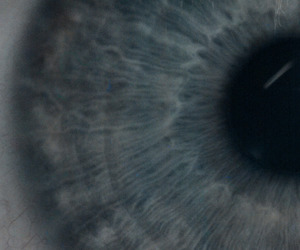 eye, blue, and photography image