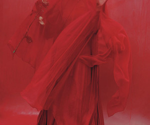 dress, red, and veil image