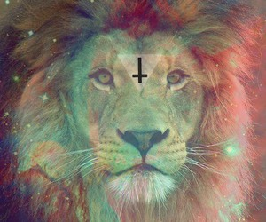 lion, hipster, and galaxy image