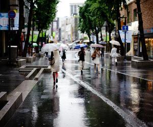 rain, city, and umbrella image