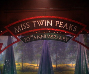 tv show and Twin Peaks image