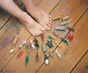 animal, feet, and toys image