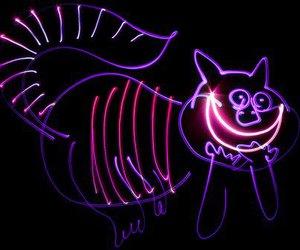cat, alice in wonderland, and light image