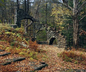 autumn, forest, and ruins image