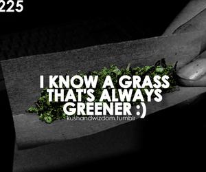 grass, marijuana, and smoke image