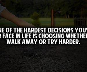 love, lfe, and hard decision image