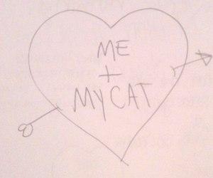 illustration, cat, and draw image