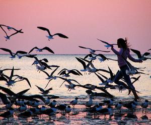 girl, birds, and beach image