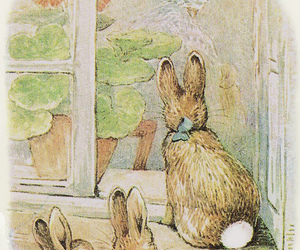 rabbit, bunny, and beatrix potter image