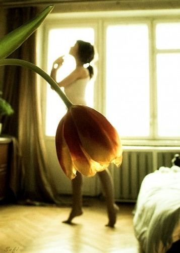 flowers, girl, and dance image