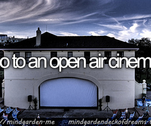 before i die, dreams, and goals image