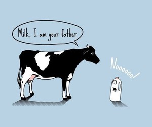 milk, cow, and funny image