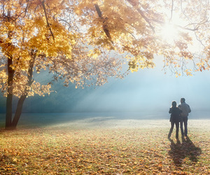 autumn, light, and lovers image