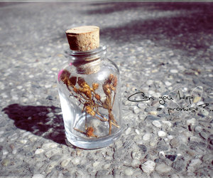 bottle, promise, and cute image