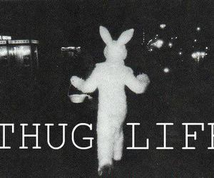 life, thug, and thug life image