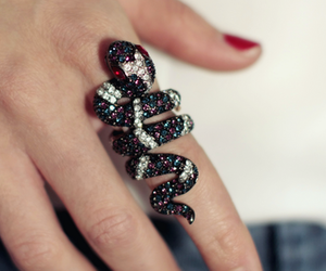 ring and snake image