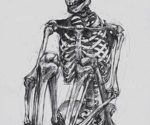 skeleton, skull, and art image