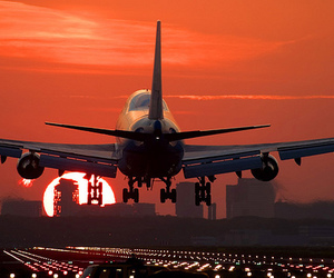 plane, sunset, and airplane image