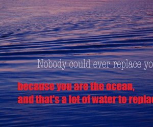funny, hipster, and ocean image