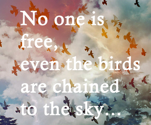 birds, chained, and quote image