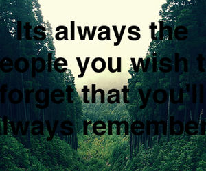 forget, frase, and quote image
