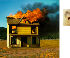 alex prager and photograph image