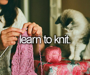 cat, knitting, and bucket list image