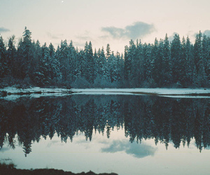 lake, winter, and nature image