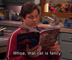 cat, funny, and drake and josh image
