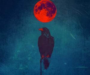 crow and moon image