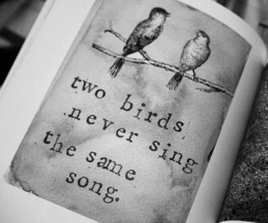 bird, quotes, and song image
