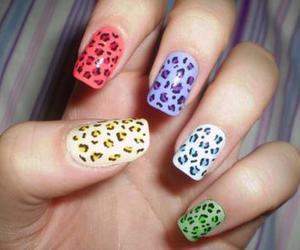 nails, nail art, and leopard image