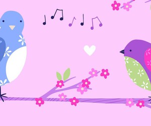 birds, color, and music image