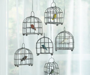 bird, cage, and diy image