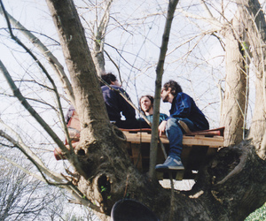 tree, love, and best friends image