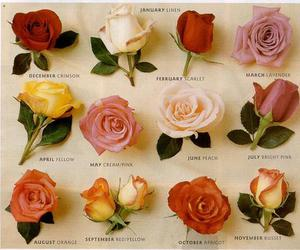 calender, flowers, and roses image