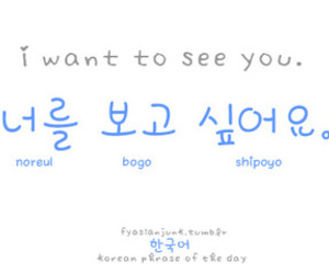 hangul, korea, and coreano image