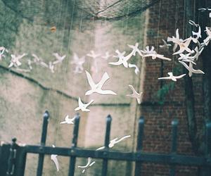 bird, vintage, and white image