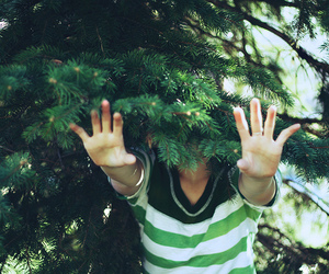 tree, green, and hands image