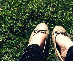 flats, grass, and green image