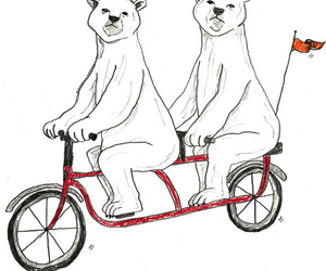 bears, Polar Bear, and bicycle image