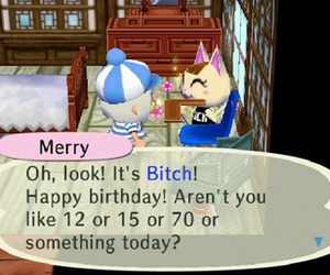 animal crossing, bitch, and lol image
