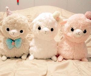 lambs image