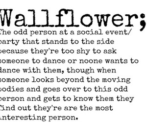 wallflower and quote image