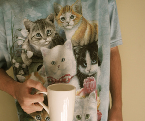 cat, boy, and coffee image