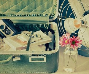 vintage, travel, and flowers image