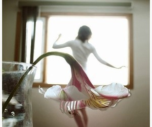 flowers, photography, and dance image