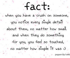 crush, love, and fact image