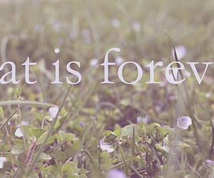 forever and text image